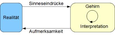 Modell der Wahrnehmung im Konstruktivismus