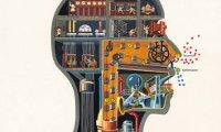 Kognitivismus - Lernpsychologie